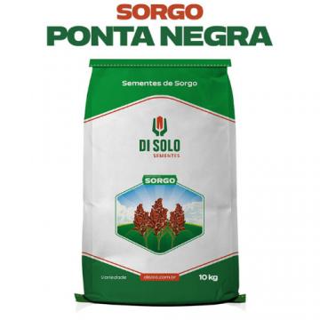 Semente de Sorgo Ponta Negra - Saco de 10 kg