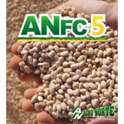 FEIJÃO - AN FC5 - Saco de 40 kg
