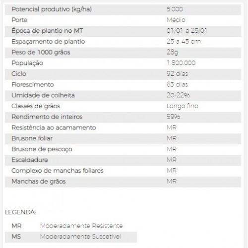 Semente de Arroz - AN 5015 - Saco de 40 kg