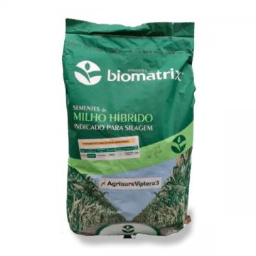Sementes de Milho BM 3077 VIP 3 + (PONCHO) - Preço de 60.000 sementes - Saco de 15 Kg