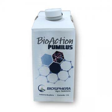 Bacillus Pumilus - 1,5 litros