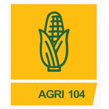 Milho Boliviano AGRI 104